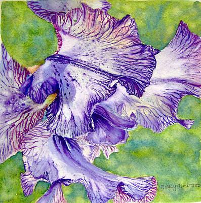 Unfolding-iris Art Print by Nancy Newman