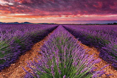 Photograph - Unforgettable Fire by Jorge Maia