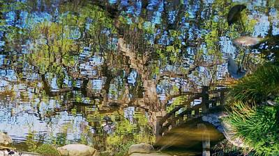 Photograph - Unfurled Beneath A Clear Blue Pond by Peter Thoeny
