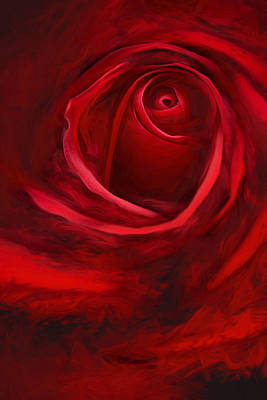Rose Photograph - Unfurling Beauty II by George Robinson