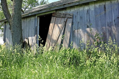 Photograph - Unhinged Shed Door by Scott Kingery
