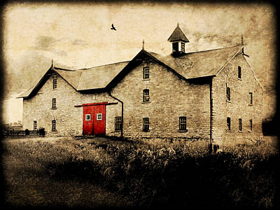 Photograph - Uni Barn by Julie Hamilton