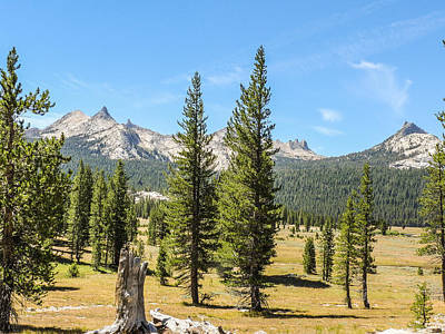Photograph - Unicorn And Cathedral Peaks Tuolomne Meadows Yosemite National Park by NaturesPix