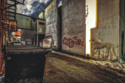 Photograph - Unicorn In The Alley by Bob Orsillo