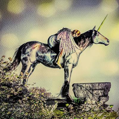 Mixed Media - Unicorn Sunset by Bob Orsillo
