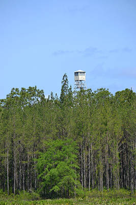 Keith Richards - Union County Fire Tower by rd Erickson