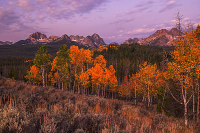 Photograph - Unique Image Of Sawtooth Mountains With Autumn Trees In The Foreground by Vishwanath Bhat