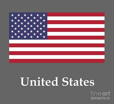 United States Flag And Name Original by Frederick Holiday