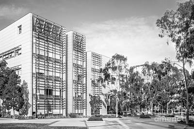 Photograph - University Of California San Diego Bioengineering  by University Icons