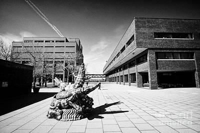 University Of Massachusetts Boston Campus Usa Art Print