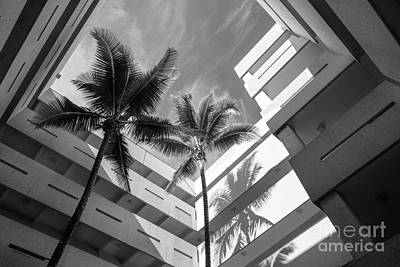 Photograph - University Of Miami Business Administration Courtyard by University Icons