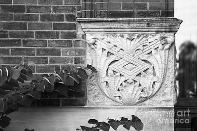 University Of Michigan Photograph - University Of Michigan Organic Detail by University Icons