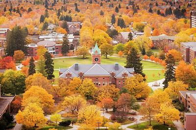 Photograph - University Of Montana Autumn by Scott Wheeler