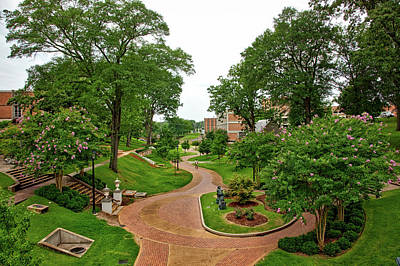 University Of Alabama Photograph - University Of North Alabama by Mountain Dreams