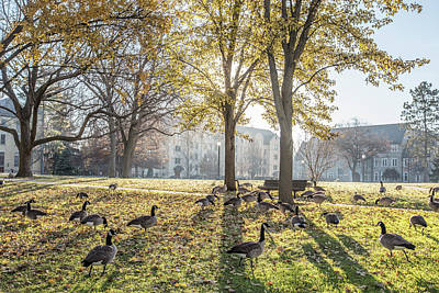 Photograph - University Of Notre Dame Campus  by John McGraw