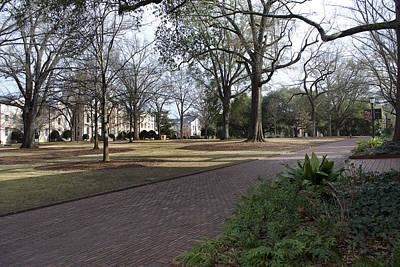 Nic Photograph - University Of South Carolina 4 by Skip Willits