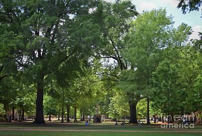Photograph - University Of South Carolina Horseshoe by Skip Willits