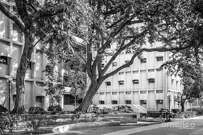 Photograph - University Of Southern California Ahmanson by University Icons
