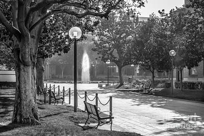 Photograph - University Of Southern California Landscape by University Icons