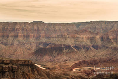 Photograph - Unkar Delta North Rim  by Robert Bales