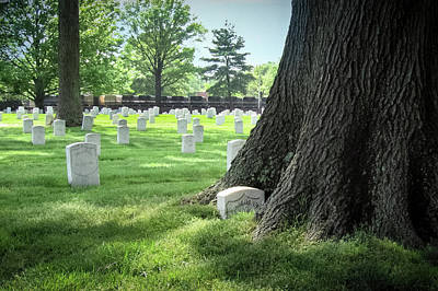 Photograph - Unkown And Tree At Arlington Cemetery by Mary Lee Dereske