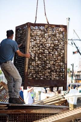Photograph - Unloading Quahogs by Allan Morrison