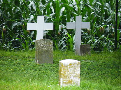 Photograph - Unmarked Youth Center Graves #1 by The GYPSY
