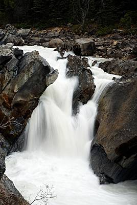 Flowing Water Photograph - Unnamed Cascade On The Yoho River by Larry Ricker