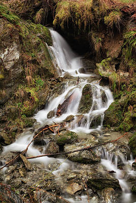 Photograph - Unnamed Creek, North Mountain by Charlie Duncan