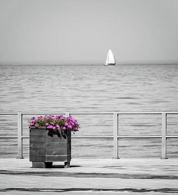 Sail Boat Photograph - Unnoticed by Wim Lanclus