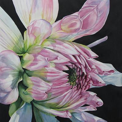 Unravelling-dahlia Art Print by Nancy Newman