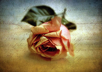 Photograph - Unsaid by Jessica Jenney