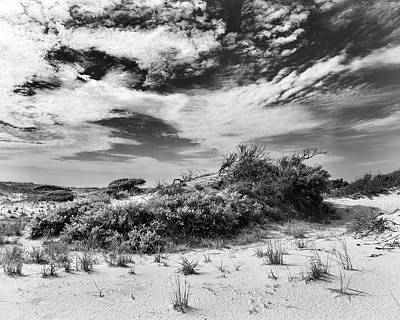 Photograph - Unspoiled by Alan Raasch