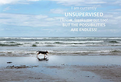 Photograph - Unsupervised by Rebecca Cozart
