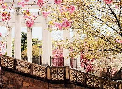 Temple Digital Art - Untermyer Cherry Blossoms by Jessica Jenney