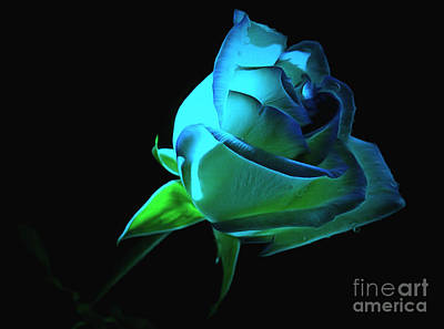 Blue Flowers Photograph - Until The End Of Time by Krissy Katsimbras