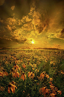 Photograph - Until You Listen To Your Heart by Phil Koch