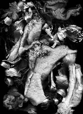Digital Art - Untitled-8a by Doug Duffey