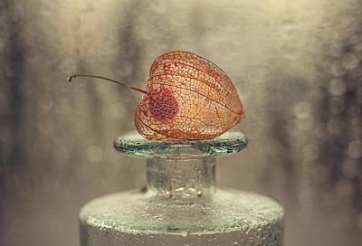 Bottle Photograph - Untitled by Valeriya Tikhonova