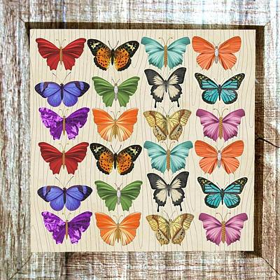 Painting - Unusual Colourful Butterfly Collage by Shabby Chic and Vintage Art