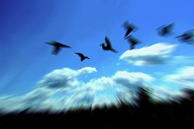 Photograph - Up Above The Clouds by Anand Swaroop Manchiraju