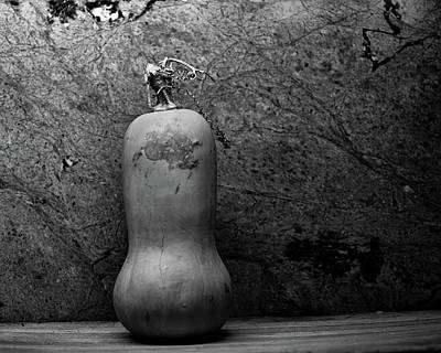 Squashes Photograph - Up Against The Wall by Susan Capuano