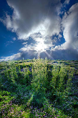 Photograph - Up And Over by Phil Koch