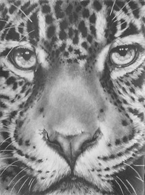 Gouache Mixed Media - Up Close Jaguar by Barbara Keith
