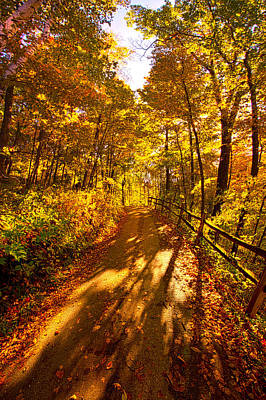 Photograph - Up Hill Both Ways by Phil Koch