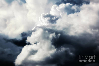 Photograph - Up In The Clouds by Janie Johnson