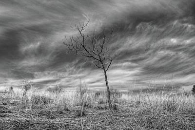 Photograph - Up On Kittatinny Ridge by Dawn J Benko