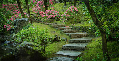 Photograph - Up The Garden Path by Don Schwartz