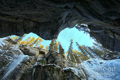 Photograph - Up Through Maligne Canyon by Adam Jewell