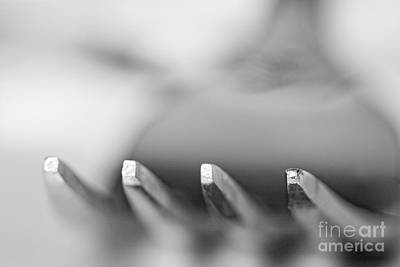 Abstract Royalty-Free and Rights-Managed Images - Upclose Fork by Linda D Lester